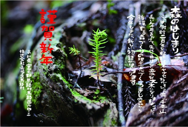 年賀状(A4)